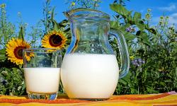 Современные технологии производства молока в крупных, средних и малых предприятиях