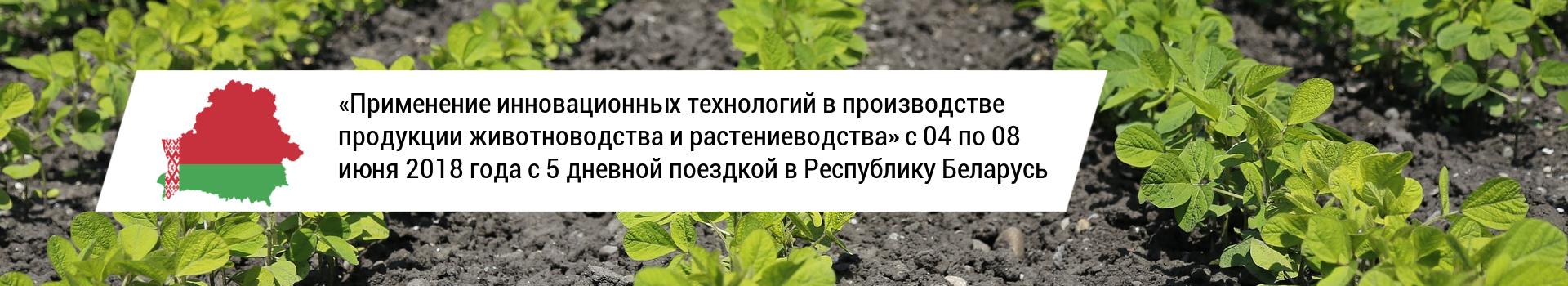 Применение инновационных технологий в производстве продукции животноводства и растениеводства с поездкой в Республику Беларусь