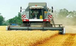 Стратегия развития зернового  комплекса России