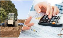 Налогообложение сельскохозяйственных организаций и КФХ. Актуализация учетной политики для целей налогообложения