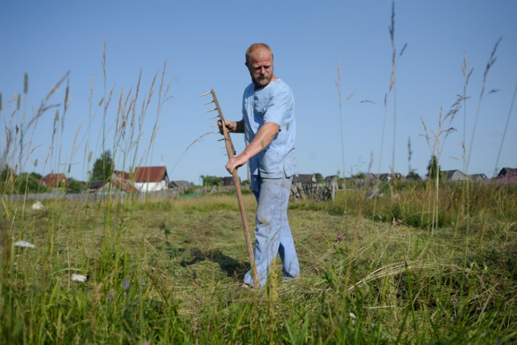 Объявлен конкурс на получение гранта «Агростартап» для фермеров
