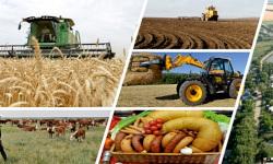 Неделя агропромышленного комплекса России