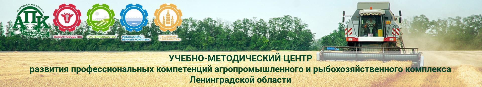 Итоги Всероссийского Дня Поля – 2019 в Ленинградской области