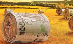 Господдержка сельскохозяйственного страхования в 2020 году
