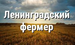 Стартует конкурсный отбор заявителей на предоставление грантов «Ленинградский фермер»