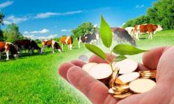 Современные технологии управления экономической деятельностью предприятия (организации)