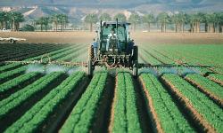 Объявлен конкурс на получение грантов для фермеров