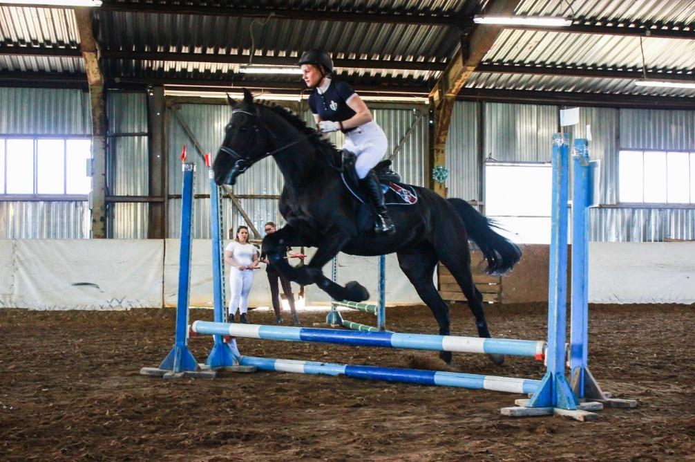 Учебные соревнования слушателей программы профессиональной переподготовки «Тренинг лошадей, подготовка всадников»