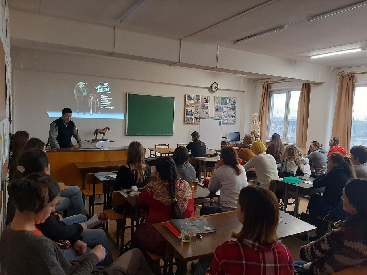 Основы репродукции лошадей. Современные методы. Перспективы в России