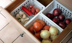 Современные технологии производства и хранения овощных культур