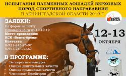 Приглашаем на испытания племенных лошадей верховых пород спортивного направления в Ленинградской области 2019г