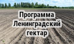 Стартует прием заявлений на участие в конкурсе по отбору соискателей на право участия в основном мероприятии «Ленинградский гектар»