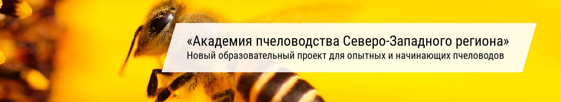 Академия пчеловодства Северо-Западного региона