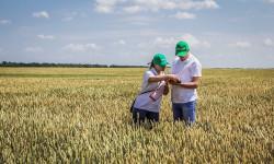 О привлечении квалифицированных кадров на сельские территории